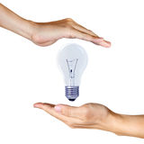 Light bulb between two hands Royalty Free Stock Image
