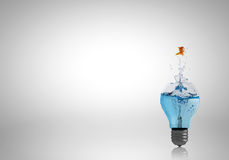 Light bulb with water Stock Images