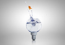 Light bulb with water Stock Photography