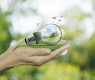 Light bulb with wind turbines and forest inside in hands on gree Royalty Free Stock Image