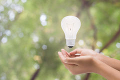 Light bulb in woman hand,Realistic photo image. Turn on tungsten Stock Photos
