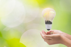 Light bulb in woman hand,Realistic photo image. Turn on tungsten Stock Photo