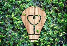 Light Bulb wood icon and heart shape inside on green leaf wall,E Stock Photos