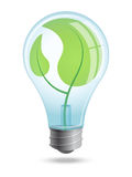 Light bulb with young shoots of plants inside the enclosure. Stock Photo