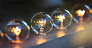 Light bulbs Stock Images