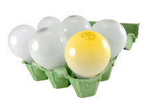 Light-bulbs in an egg box Royalty Free Stock Photos