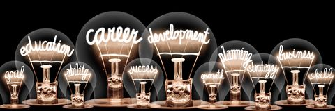 Free Light Bulbs With Career Development Concept Royalty Free Stock Photo - 163951455