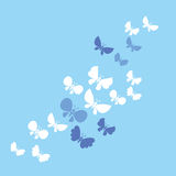 Light butterflies Royalty Free Stock Image