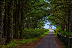 Light from Cape Meares Lighthouse at end of path stock photo