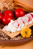Light cheese and radishes on crisp slice of bread. Vertical photo of crisp thin bread with light cheese with herbs and radishes placed on clay plate with Stock Photography