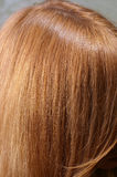 Light chestnut hair with parting Royalty Free Stock Photos