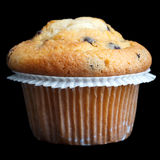 Light chocolate chip muffin in wax liner on black Royalty Free Stock Image