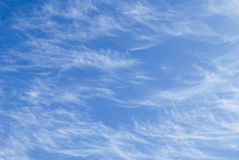 Light Cirrus clouds Stock Images