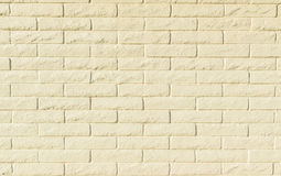 Light colored brick wall background or texture. Brick wall for backgrounds or textures in sunshine Royalty Free Stock Image