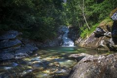 Light colored stream with a green bathing hole in the forest. stock image