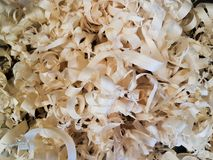 Light colored wood shavings texture close up. Light colored wood shavings texture Royalty Free Stock Images