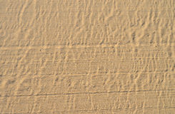 Sandy Sand Background Or Backdrop. A light coloured sandy beach that has been smoothed by machine suitable for use as a background Royalty Free Stock Image