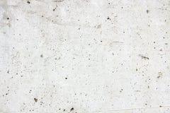 Light concrete background Stock Image