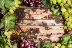 Light and dark grapes with leaves and vines on a wooden background, top view, frame Royalty Free Stock Images
