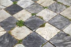 Light and dark gray squares in walkway, with tufts of grass growing up between each Stock Image