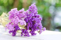 Light and dark tone Purple Statice royalty free stock photos