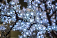 Light decorative trees near the shopping center in winter. Close royalty free stock image