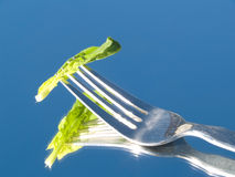 Light diet Royalty Free Stock Image