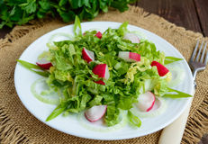 Light diet Spring salad of Chinese cabbage and radish. Royalty Free Stock Photos