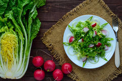 Light diet Spring salad of Chinese cabbage and radish. Vegan dish. Stock Photos