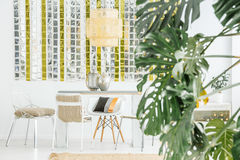 Light dining area. With table, chairs and monstera plant Stock Image