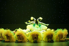 The light of the early morning sun-Yellow chicks -Children dance Royalty Free Stock Photos