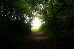 Light at the End of the Forest Tunnel. Nature trail path at Mariposa Park in Jasper County Iowa. Bright light at end of the forest tunnel Royalty Free Stock Images