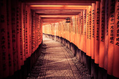 The Light At The End Of The Tunnel. The sun leading the way through the Kyoto Gates Royalty Free Stock Photo