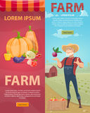 Light Farming Vertical Banners. With natural vegetables fruits and bearded farmer on green field landscape vector illustration Royalty Free Stock Image