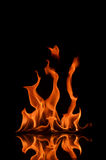 Light of Flame. Beautiful flames of burning liquid Royalty Free Stock Images