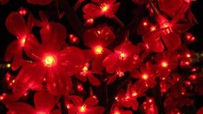 Light flowers stock photography
