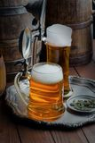Beer in a glass Royalty Free Stock Image