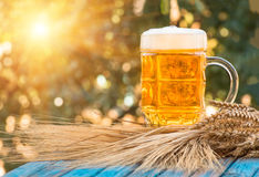 Light foamy beer in a glass on natural background Royalty Free Stock Photo