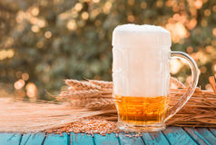 Light foamy beer in a glass on natural background Royalty Free Stock Photography