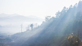 Light in fog. Morning, when the suns light to the earth from the mountains between irradiation Stock Photography