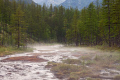 Light fog over the rocky creek in the mountains. Stock Photos