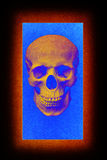Light frame background skull Royalty Free Stock Photography