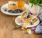 Light fresh crunchy pastry tartlet of blueberries Stock Images