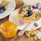 Light fresh crunchy pastry tartlet of blueberries Royalty Free Stock Photography