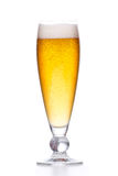 Light fresh gold beer with foam isolated on white Royalty Free Stock Photo