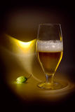 Light, glass and hop (black key still life) Royalty Free Stock Image