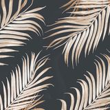 Light golden curved palm leaves pattern on dark background. Tropical concept. Creative layout stock image