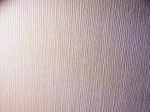 Light grain. A light grain pattern on a light cream wall Stock Images