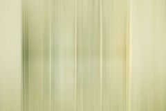 Light gray and green stripes blurred background Stock Photography