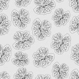 Light gray Hibiscus flower print. Gorgeous nasturtium.loral Pattern. Trendy seamless background. Fashion Texture. Line drawing. Vector botanical illustration Stock Photo